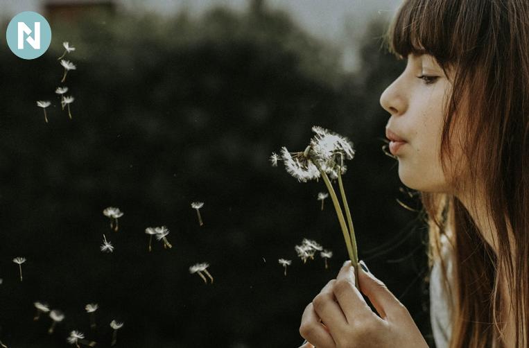 Alergia al Polen | Prevenir Alergia al Polen